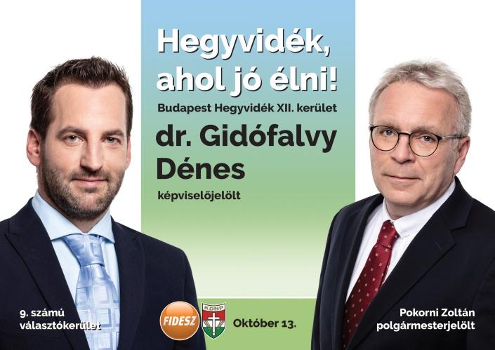 Dr_Gidofalvy_Denes_szorolap